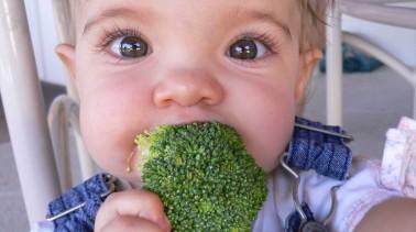"Nutrition Professor Says ""No Broccoli Health Benefits. Ditch ASAP!"""