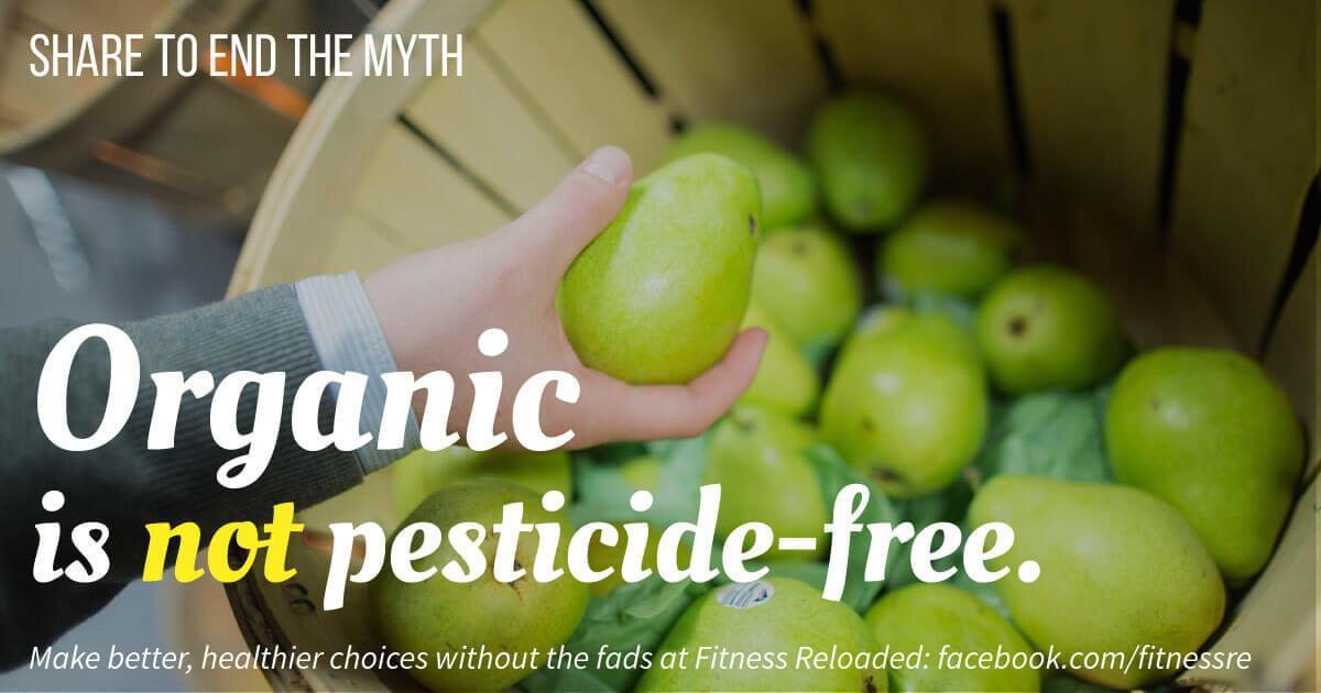 organic food kids