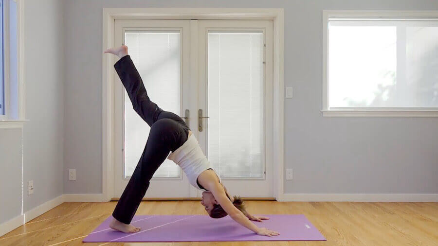 downward dog love handles workout