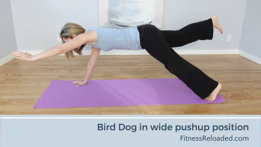 bird dog exercise in wide pushup position